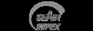 seair-100x300.png
