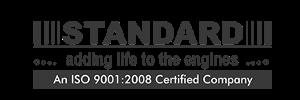 standard-100x300.png